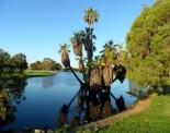 thumbs sam 3338 Austraalia loodus