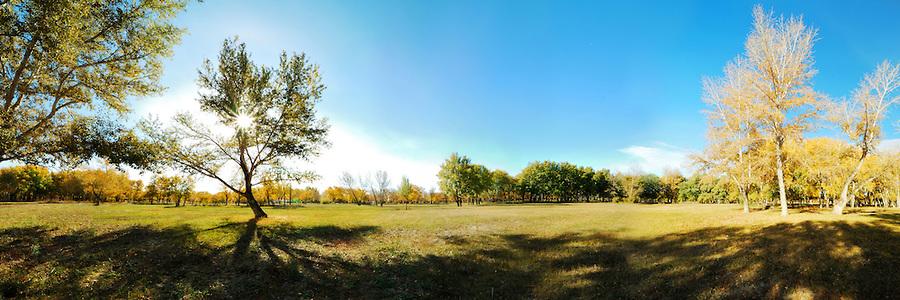 Countryside Green Land Noortekas 9. septembril kell 17.00