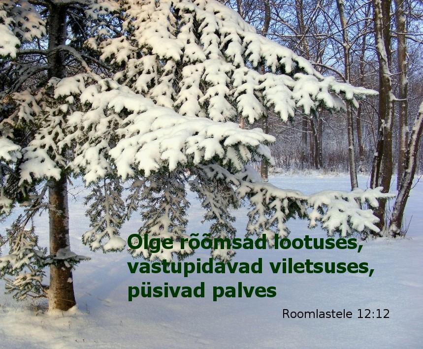 thumbnail lumine  Piiblisalm