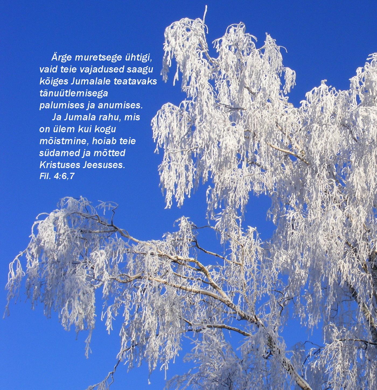 talvehommik  Piiblisalm