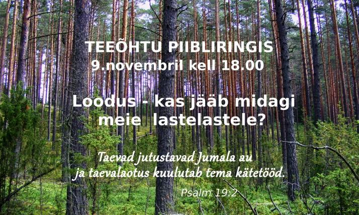 teeõhtu loodus 714x428 Olete oodatud teeõhtule piibliringis 9. novembril 18.00