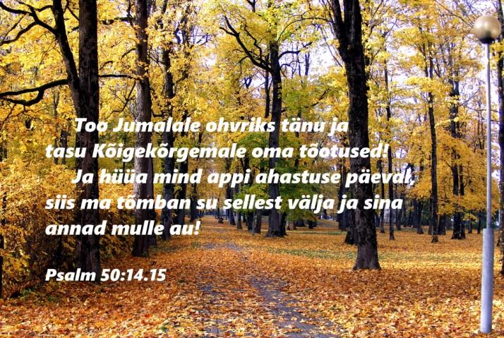 too tänu 714x479 Piiblisalm