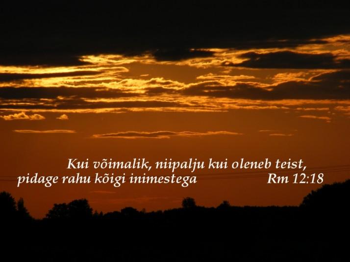 salm3 714x536 Piiblisalm