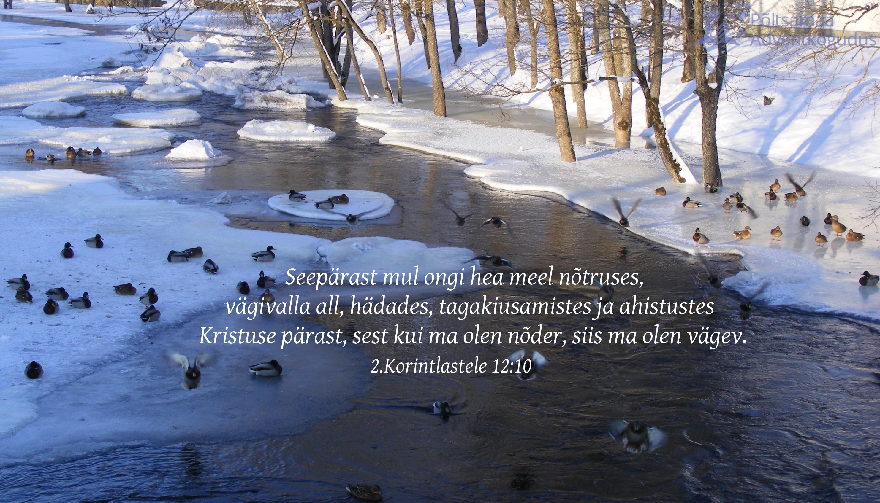 nõtruses Kristuse mäejutlus   õnn on olla tagakiusatud?