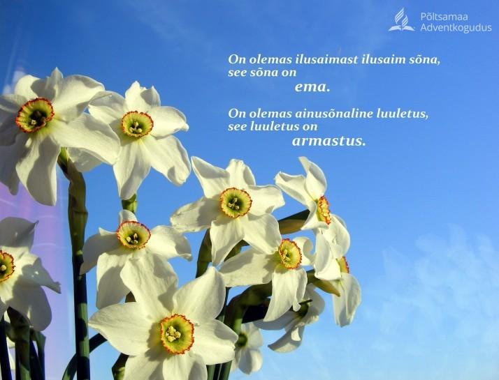 ilusad sõnad 714x545 Emadepäev