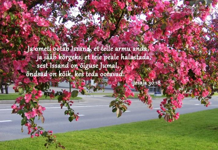 õiguse Jumal  714x492 Piiblisalm