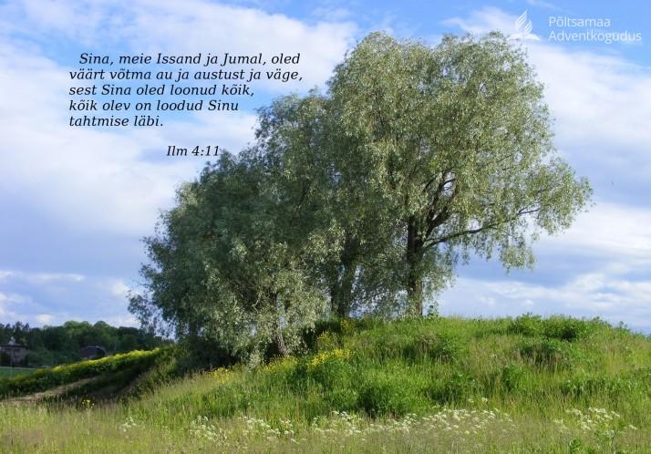 kõik loonud 714x498 Näe looduses armastavat Jumalat!