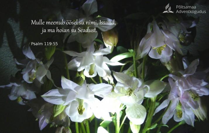 meenub Su nimi 714x454 Jumala käsud