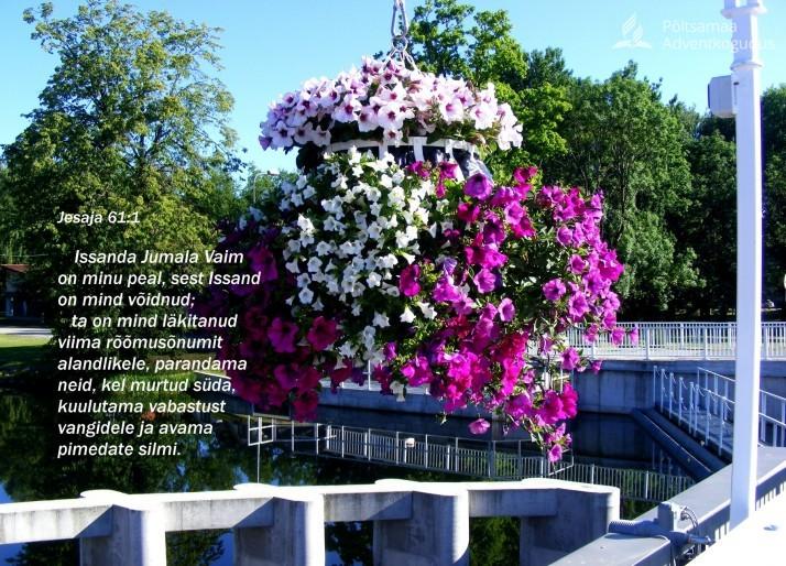 rõõmusõnum. 714x514 Jumala iseloom = Kristuse iseloom