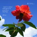igavene elu 150x150 Kliendipäev: Unistuste Kodu