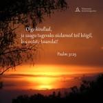 olge kindlad 150x150 Jumala iseloom = Kristuse iseloom