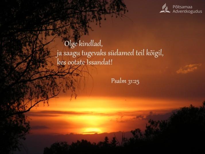 olge kindlad 714x536 Õige elab usust